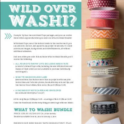 Wild Over Washi Tape Bundle