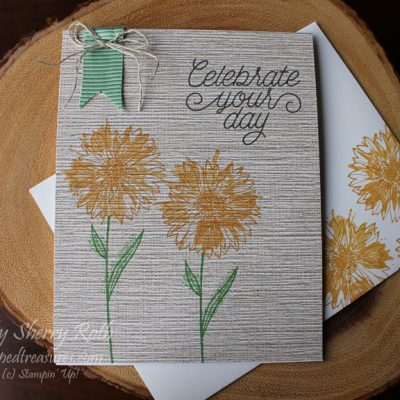 Touches of Texture and Designer Tin of Cards Stamp Set – a GREAT pair!
