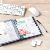 Love Today Planner Setup and Flip Through