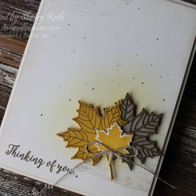 Colorful Seasons Bundle by Stampin' Up!
