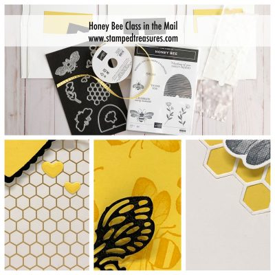 Honey Bee Class in the Mail