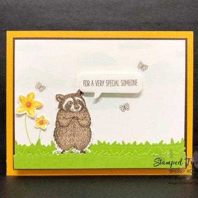 Special Someone Birthday Card