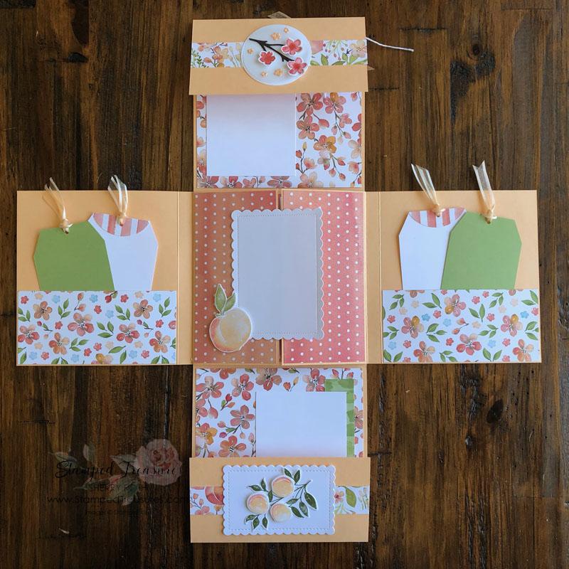 Sweet as a Peach Interactive mini Album